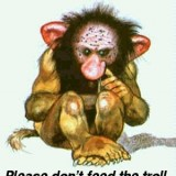 Please-Don-t-Feed-the-Troll-atsof-573296_300_336